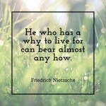 Friedrich Nietzsche: He who as a why to live for can bear almost any how.