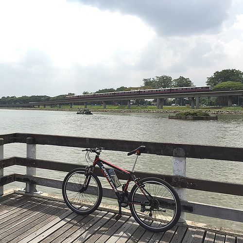 Gravatar: Anger Management at Yishun Reservior
